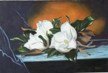 Magnolias D. Barcia